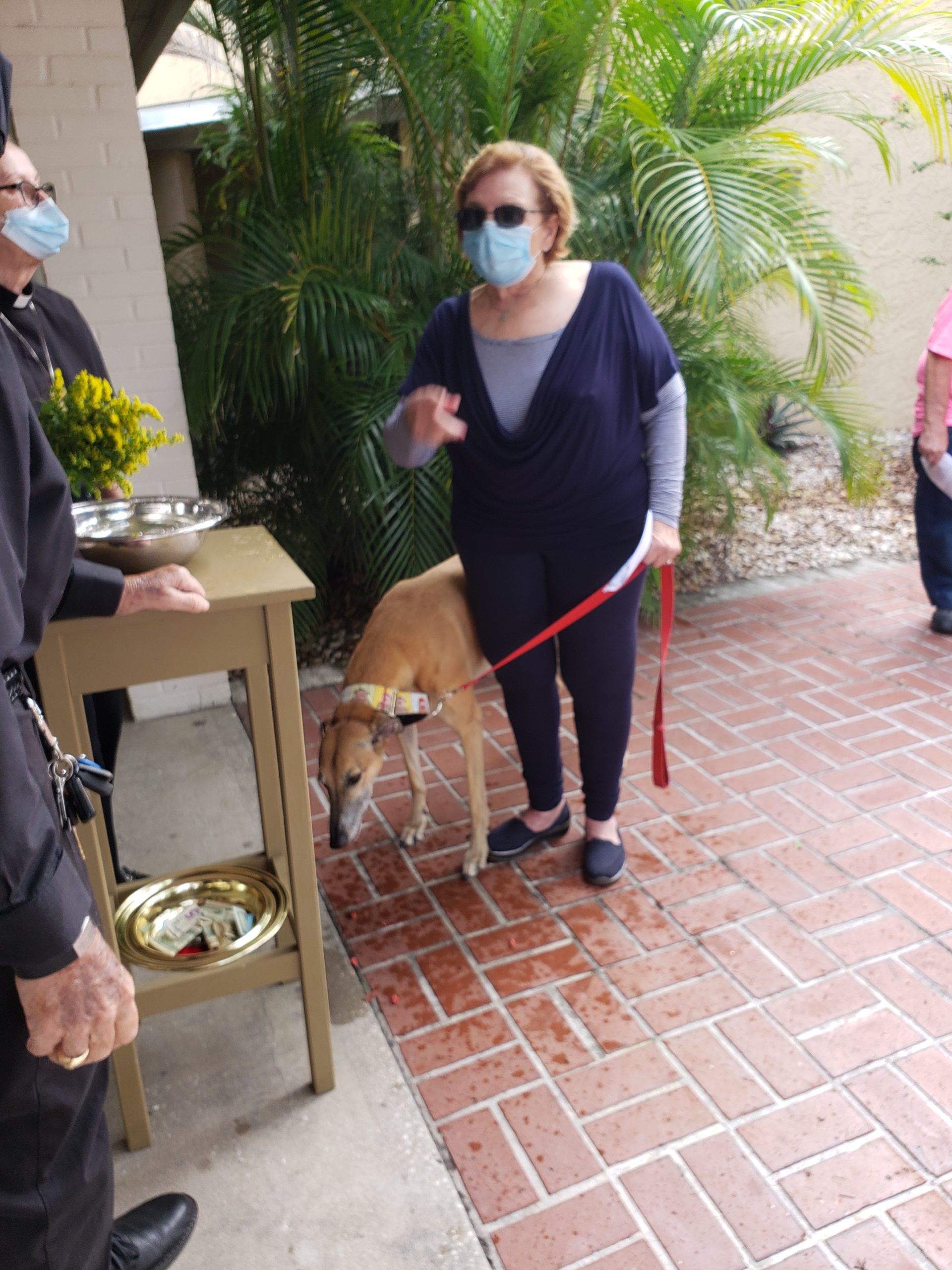 Blessings of the Animals at Christ Lutheran Church